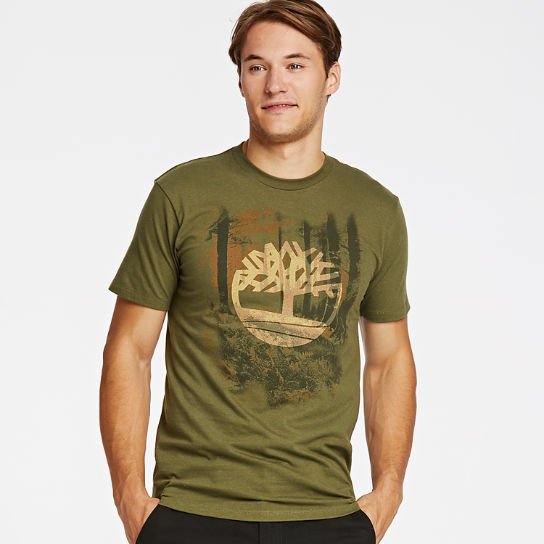 Men Timberland Ancient Forest Graphic T-Shirt A3K4V301