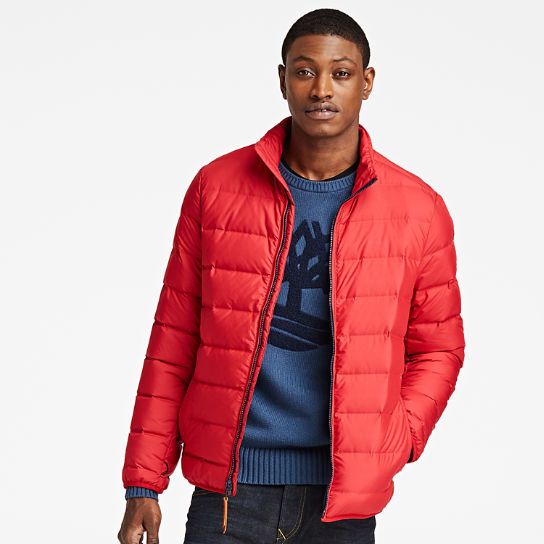 Men Timberland Bear Head Down Jacket A1QV6604