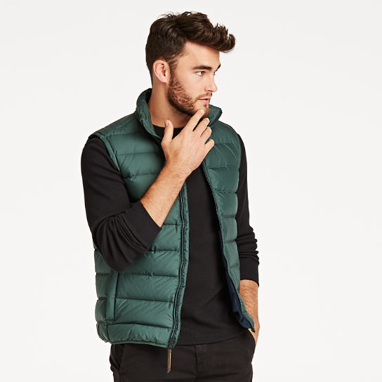 Men Timberland Bear Head Packable Down Vest A1QUU317