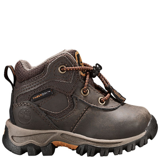 Kids Timberland Toddler Mt. Maddsen Waterproof Hiking Boots A14IX242