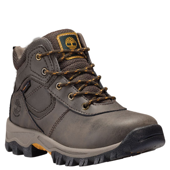 Kids Timberland Youth Mt. Maddsen Waterproof Hiking Boots A16I3242
